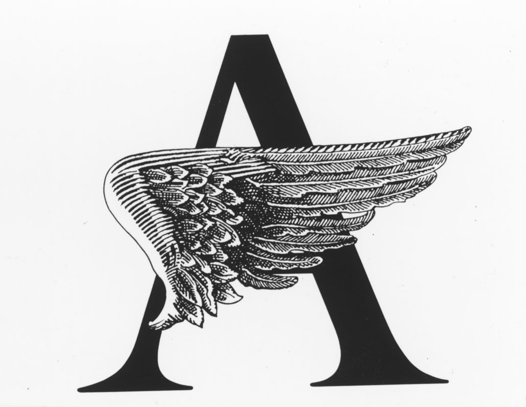 "A large letter ""A"", partially obscured by a black-and-white wing."