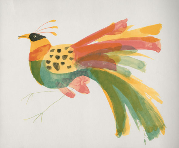 Painting of a bird with colorful plumage against a white background