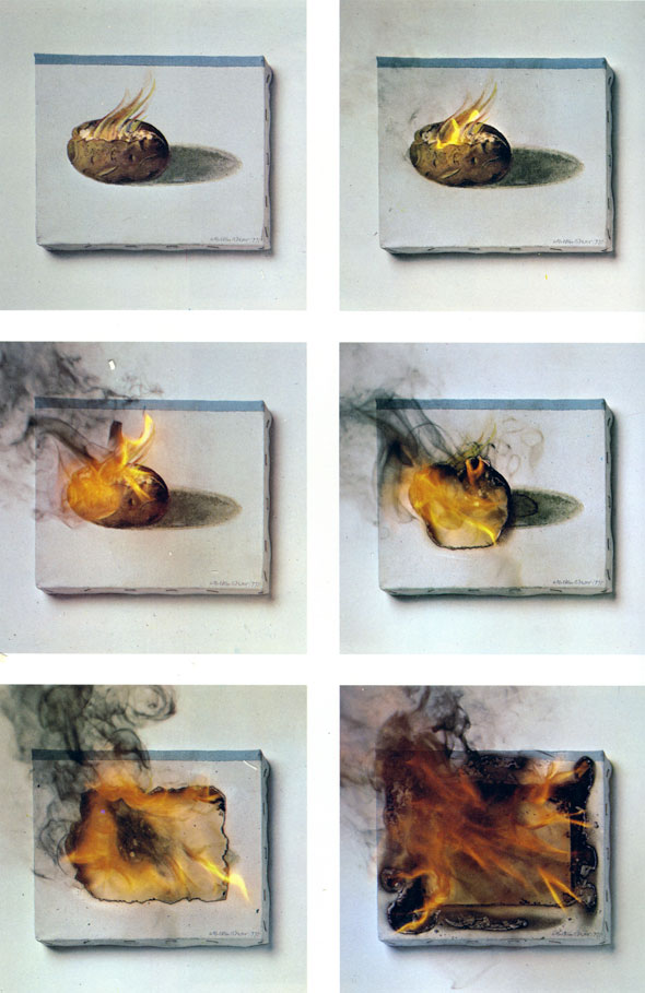 Six panels of color photography showing the progression of a painting of a potato being set on fire and burning