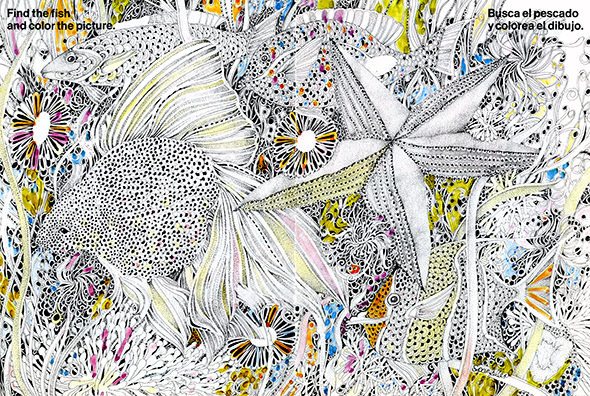 Detailed black and white illustration with some watercolor of four fish and one starfish.