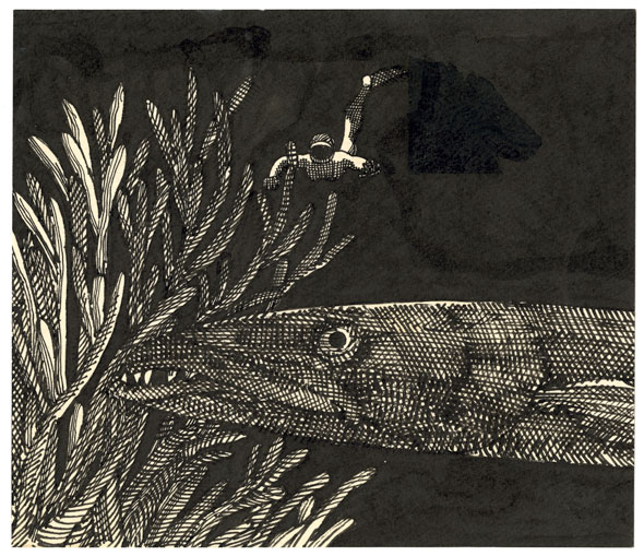 An etching of man snorkeling underwater approaching a big long fish near some sea plants. The black water is has streaks of a thick black marker while the man, fish, and sea plants are drawn with thin black lines.