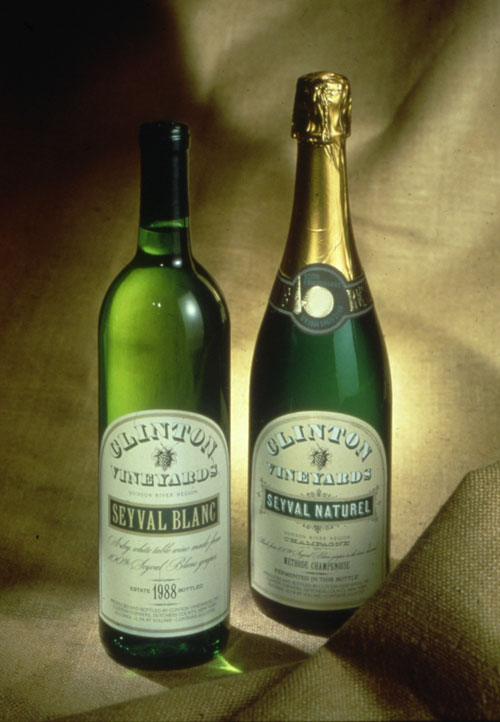 "A photo of two green alcohol bottles. The left bottle is shaped like wine bottle and has a simple label for ""Clinton Vine Yards"" in the middle of the words is a small ink drawing of a grape. The right bottle is shaped like a champagne bottle. It's sealed with gold foil. The label is similar to the on the left only wider."
